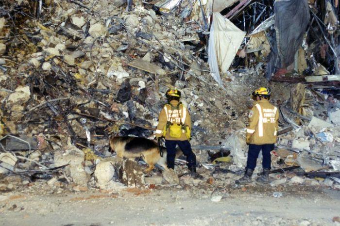 ФБР опубликовало фото, сделанные после атаки на Пентагон 11 сентября 2001 года (22 фото)