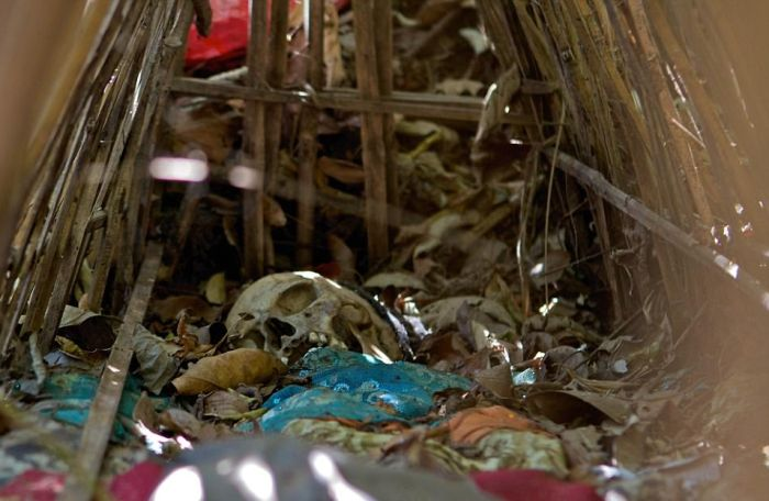 Необычный похоронный ритуал жителей деревни Труньян на Бали (12 фото)
