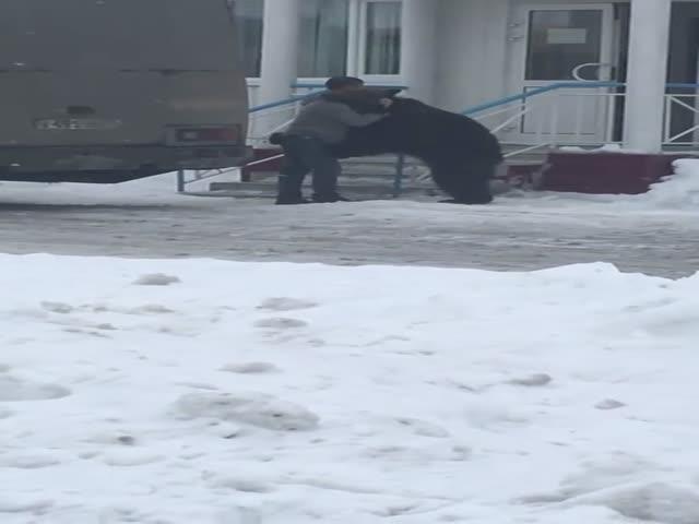 Парень обнимается с медведем