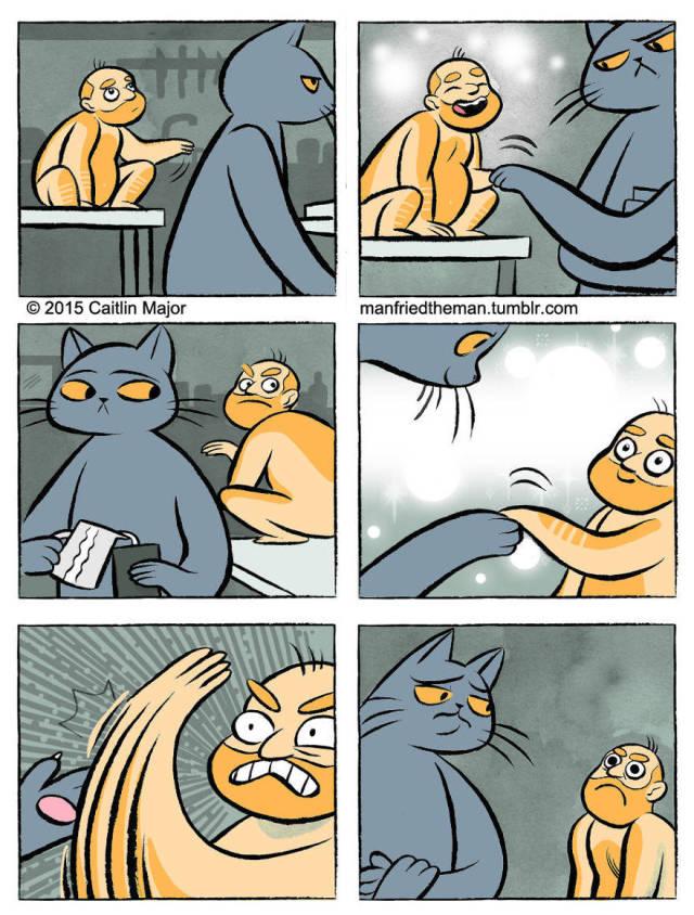 Если бы человек стал домашним питомцем кота (18 картинок)