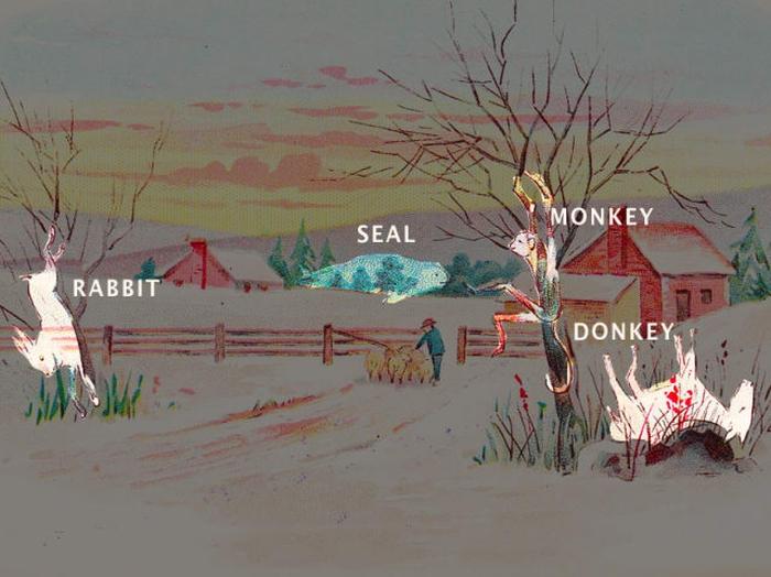 Сколько животных вы видите на этой картинке? (2 фото)