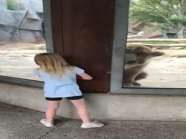 Девочка играет с медведем