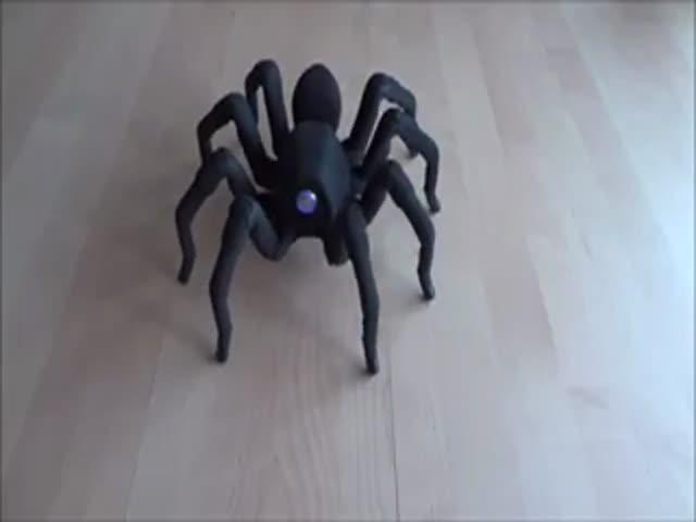 Зажигательный танец паука-робота