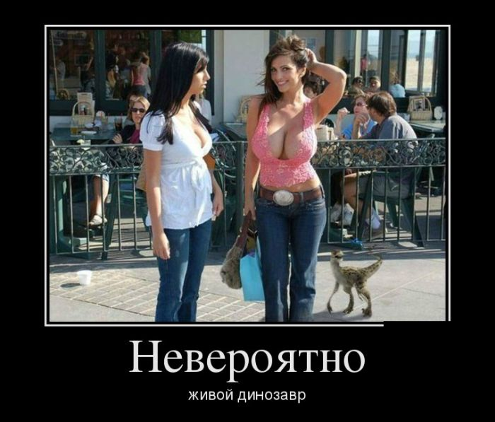demotivatory_11.jpg