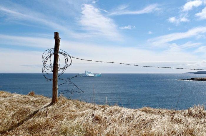 Парад айсбергов у канадского побережья (15 pics)