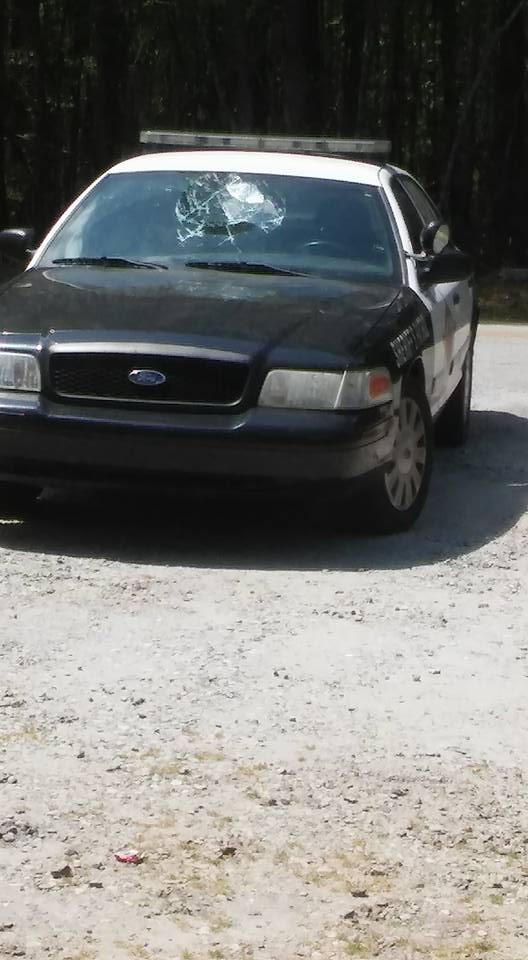 Американец отметил Пасху непристойными фото на крыше автомобиля шерифа (5 фото)