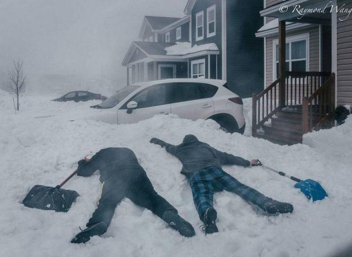 Странности из Канады (31 фото)