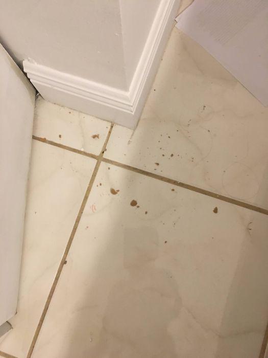 Шальная пуля влетела в дом (7 фото)