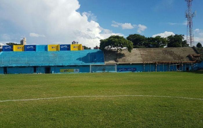 В Парагвае трибуну построили вокруг растущего на стадионе дерева (4 фото)