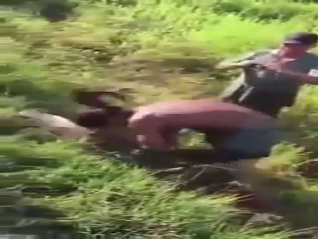Рыба отправила рыбака в нокаут