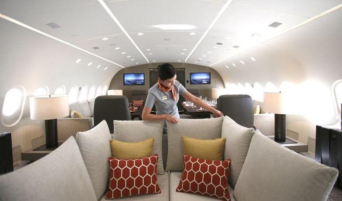 Dreamliner B787 Dreamjet - самый большой в мире частный самолет (12 фото)