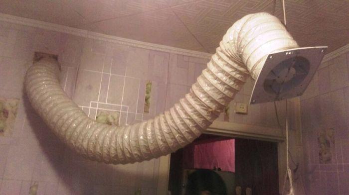 В Забайкальском крае мужчина выращивал коноплю в собственной квартире (3 фото)