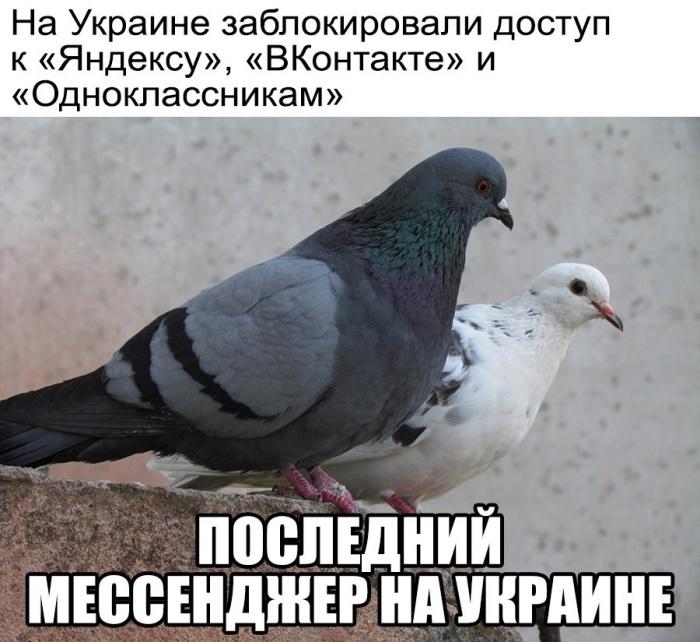 "Реакция соцсетей на запрет ""ВКонтакте"", ""Одноклассников"" и сервисов ""Яндекс"" на Украине (17 фото)"