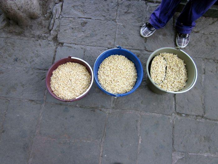 Мексиканский деликатес эскамолес (11 фото)