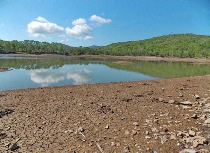 В Приморском крае из-за бездействия чиновников погибает озеро (12 фото)