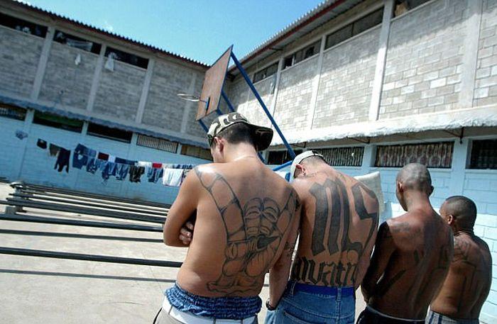 Камеры членов банды MS-13 в Гондурасе (7 фото)