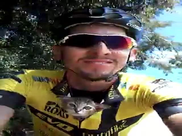 Бразильский велосипедист подобрал котенка на трассе
