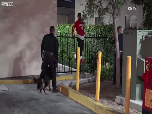 Нарушитель застрял на заборе
