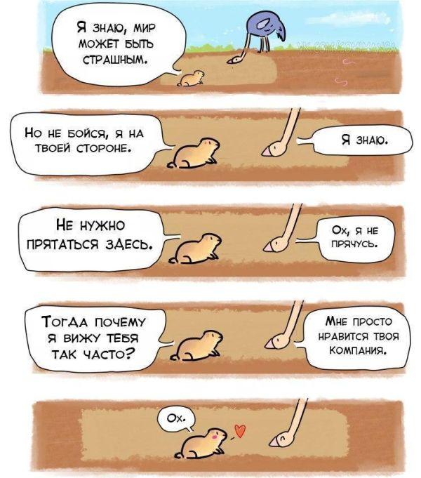 комиксы экзамены