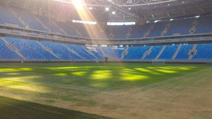 """На """"Зенит-Арене"""" меняют газон за девять миллионов рублей (2 фото)"""