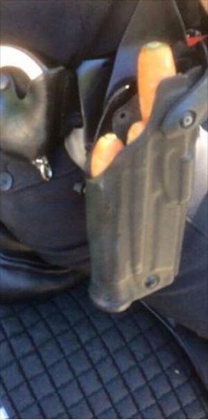 Основное оружие конной полиции (2 фото)