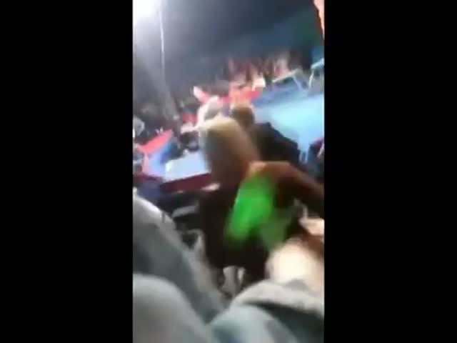 В украинском цирке медведь набросился на зрителей