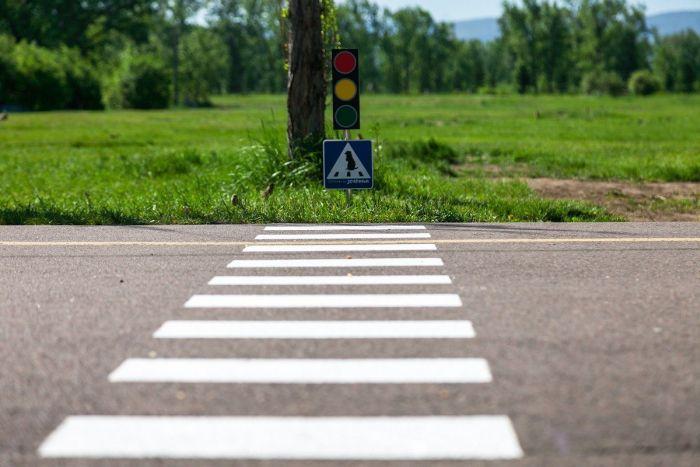 В Красноярске появился пешеходный переход для сусликов (6 фото)