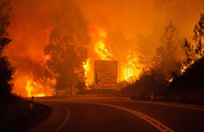portugal_forest_fires_01.jpg