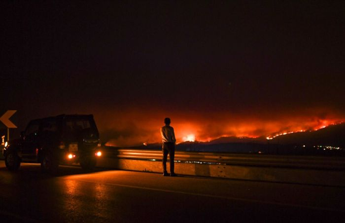 portugal_forest_fires_06.jpg