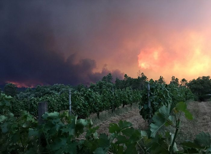 portugal_forest_fires_08.jpg