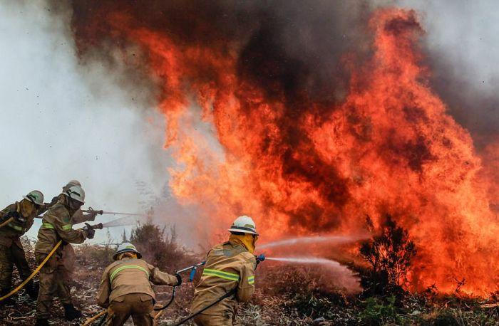 В Португалии бушуют лесные пожары (15 фото + 2 видео)