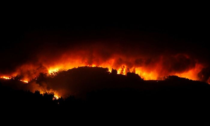 portugal_forest_fires_12.jpg
