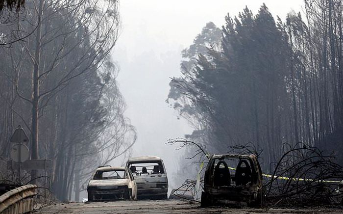 portugal_forest_fires_15.jpg