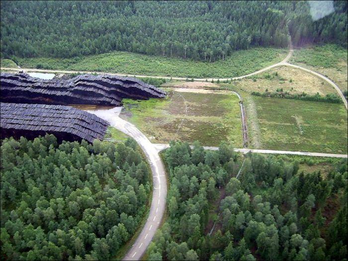 Крупнейшее в мире хранилище древесины в Швеции (6 фото)
