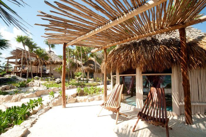 Мексиканский отель предложил своим клиентам номер на дереве (11 фото)