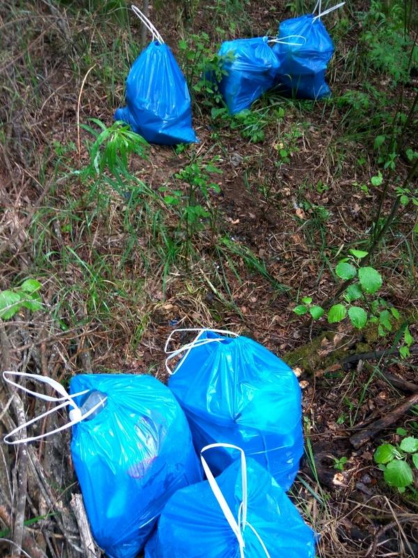 Борьба с лесными микро-свалками (9 фото)