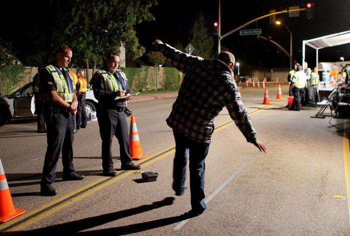Новозеландская газета публикует имена водителей, задержанных за пьяную езду (2 фото)