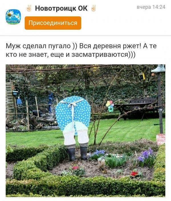 Странности из «Одноклассников» (40 фото)