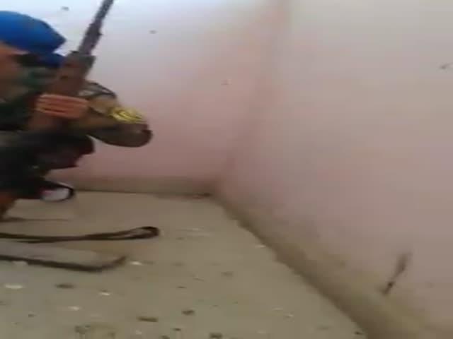 Девушке-снайперу очень сильно повезло