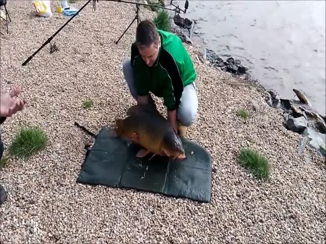 Радость рыбака оказалась недолгой