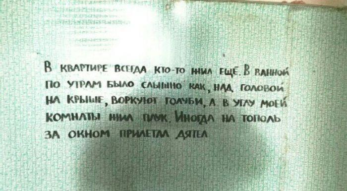 Дневник на стенах расселенного дома (8 фото)