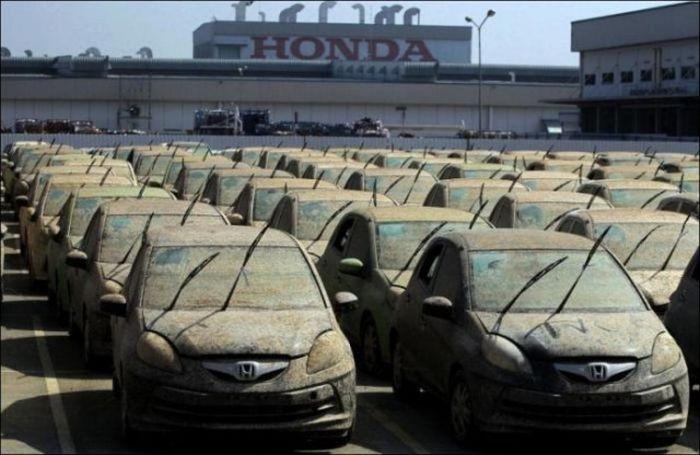 Компания Honda утилизирует новые автомобили (7 фото)