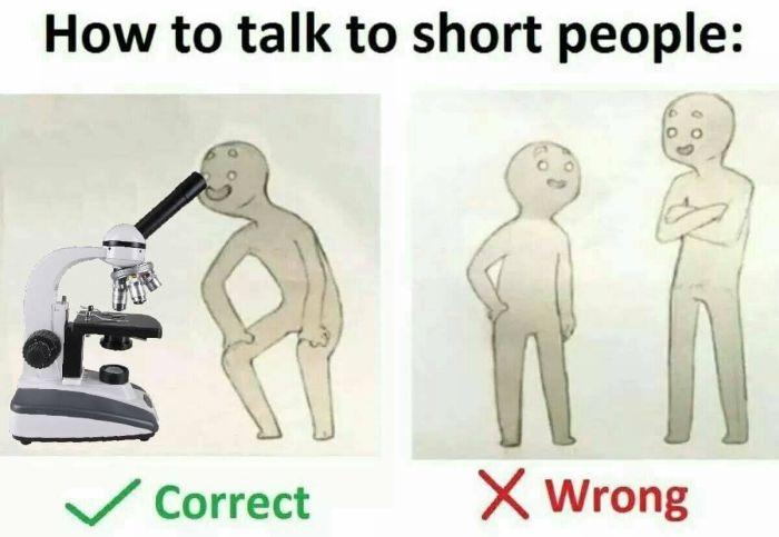 Как общаться с людьми небольшого роста (9 картинок)