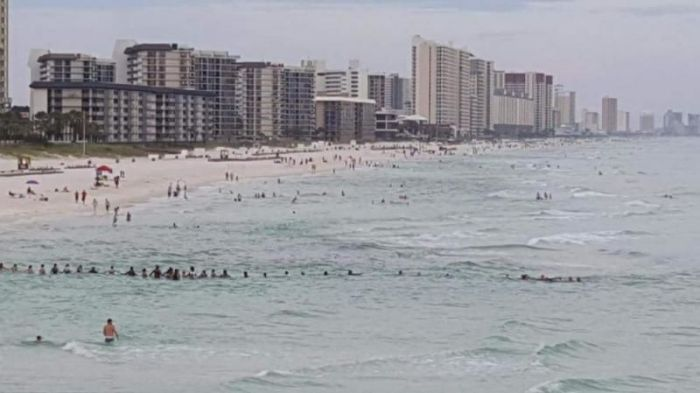 Отдыхающие на пляже выстроились в живую цепь, чтобы спасти утопающих (2 фото + видео)
