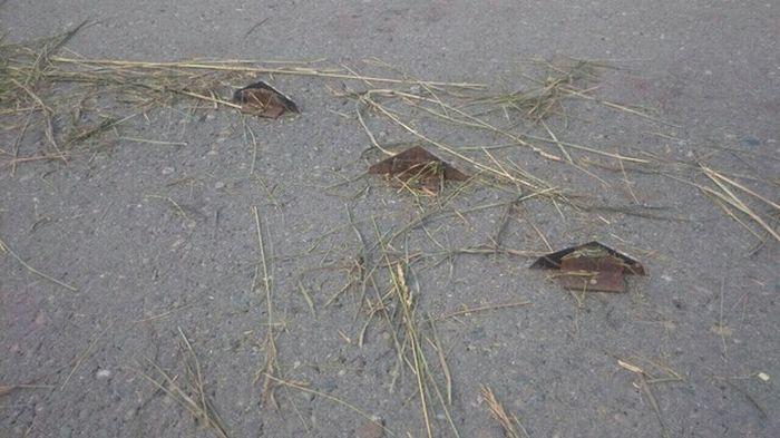Опасность на трассе Бийск - Новокузнецк (4 фото)