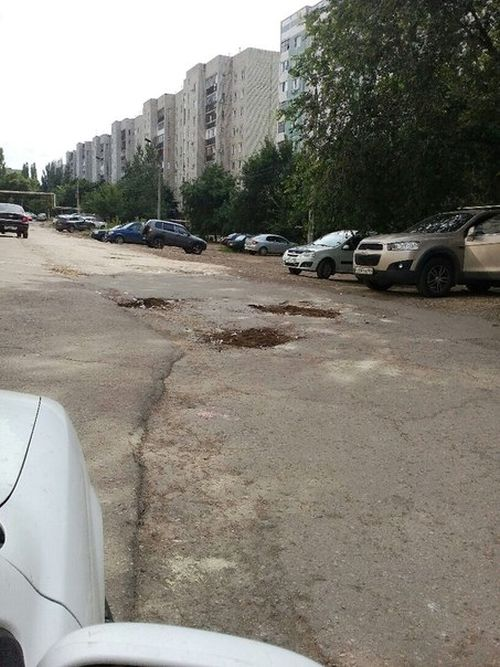 В Саратове ямы на дороге засыпали фигурками котов (4 фото)
