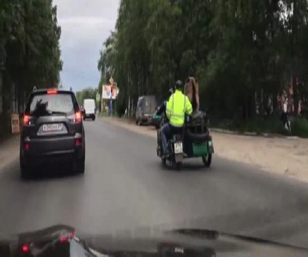 Медведя прокатили по улицам Архангельска