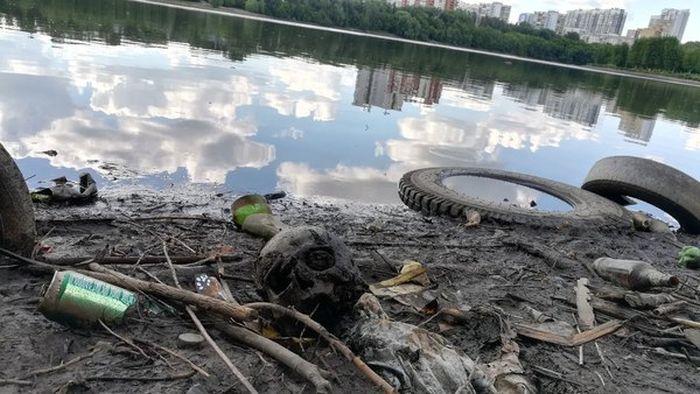 В Екатеринбурге в Городском пруде найден человеческий череп (2 фото)