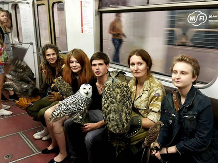 Странные пассажиры из метро разных городов мира (41 фото)