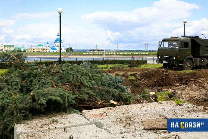 В Чебоксарах пожертвовали елями и газоном ради колеса обозрений и фастфуда (8 фото)